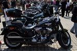Vienna Harley Days 2011 9549656