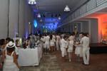 Celebrate in White 9792147