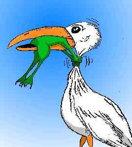 Gruppenavatar von Lieber einen Frosch im Hals, als einen VOGEL im Kopf.......  :-)