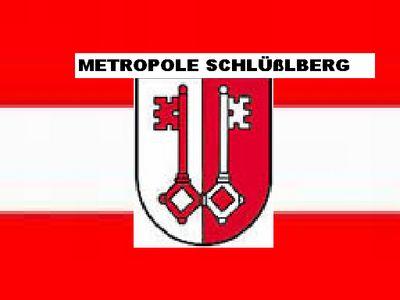 Gruppenavatar von Die Zukunft Österreichs- die Metropole Schlüßlberg