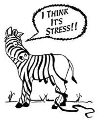 Gruppenavatar von stressts mi ned!! `_´