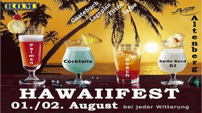 Gruppenavatar von Hawaiifest 08- Ich war DABEI!!:-)