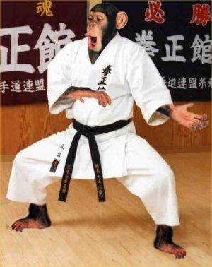 Gruppenavatar von Höfts ma auf i kaun Karate