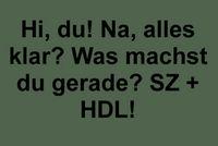 ♥♥ Ich beende meine PNs immer mit H.D.L♥♥