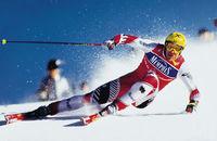 Gruppenavatar von Hermann Maier - der weltbesste Skifahrer aller Zeiten!