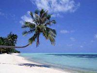 --Urlaubsliebende Menschen--