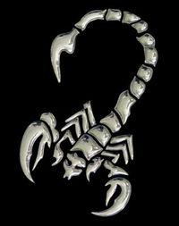 *~Skorpion~*....die Besten unserer Art....