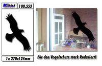 Gruppenavatar von Ich laufe ja sogar an Scheiben an wo dieser schwarzer Vogel draufklebt