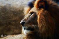 Gruppenavatar von Im AUGUST geboren, Löwen san die BESTEN !!!!!