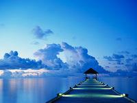 Gruppenavatar von Träume nicht dein Leben, sondern lebe deinen Traum !!
