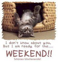 Gruppenavatar von Das Wochenende ist viel zu kurz!!!!!