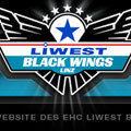 Gruppenavatar von Black Wings Linz