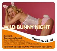 Wild Bunny Night@Evers