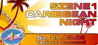 SZENE1-CARIBBEAN-NIGHT@Hasenstall