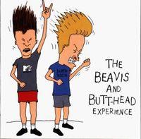 Gruppenavatar von Beavis & Butt-Head