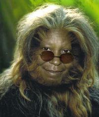 Gruppenavatar von Deine Mama is so behaart die einzige Sprache die sie spricht is Wookie