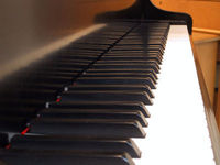 Gruppenavatar von musik als zuflucht....