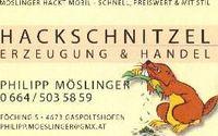 Gruppenavatar von Hackschnitzelerzeugung & Handel Philipp MÖSLINGER-0664/5035859