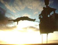 Gruppenavatar von Bungee jumping