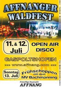Affnanger Waldfest(Rock´n´Rave) 2008 i woa dabei!!!