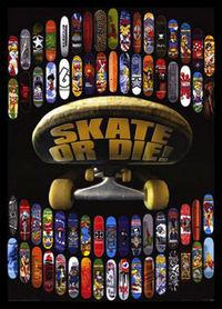 skater_club