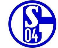 Gruppenavatar von FC Schalke 04 szene1-Fanclub