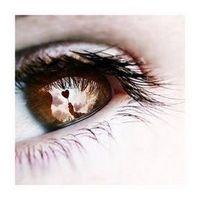 Gruppenavatar von >>Ich hätte dir nie in die Augen sehen dürfen, denn dann hätte ich nie gemerkt wie schön sie sind