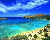 Plan B: Cocktailbar und Surfschule auf Hawaii