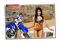 Gruppenavatar von MX-Riders do it better