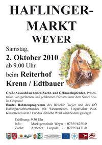 Haflingermarkt@Reiterhof Krenn/Edtbauer