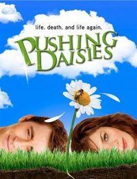 Gruppenavatar von Pushing Daisies