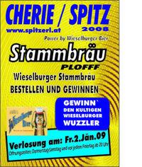 Partynight - Stammbräu