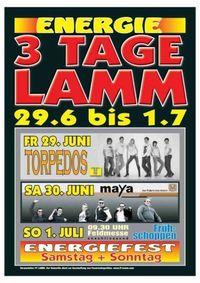 3 Tage Lamm@Lamm