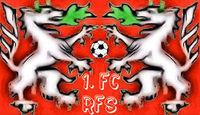1. FC Red Fanatics Steyr