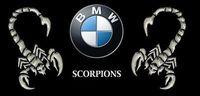 Gruppenavatar von BMW Scorpions