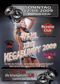 Wahl zur Megabunny 2009