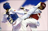 Kung Fu war gestern TAEKWONDO ist Heute!!
