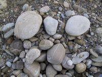 Gruppenavatar von Steine sind die besten Haustiere