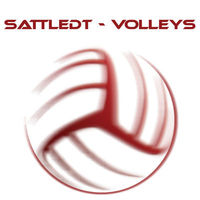 Gruppenavatar von volleyballverein sattledt