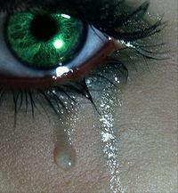 Gruppenavatar von Tränen sind die BESTEN Freunde.......    Sie kommen wen dich andere schon längst verlassen haben!!!!