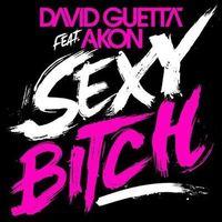 Gruppenavatar von für alle die das lied ``sexy bitch`` geil finden !!!