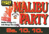 Malibu Night
