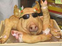 Wir töten Schweinegrippeviren mit Alkohol!