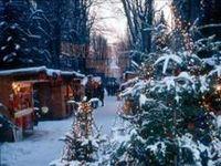 Steyrer Christkindlmarkt@Promenadenallee