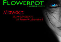 Big Wednesday!@Flowerpot