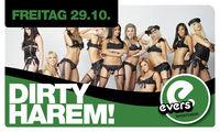Dirty Harem@Evers
