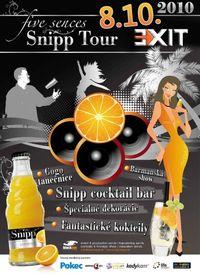 Snipp Tour 2010