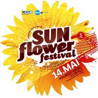 Sunflower festival