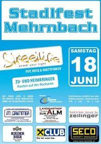 Foto 199 von 199:: Stadlfest Mehrnbach:: Gemeindestadl