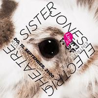 Live im HOF mit Sister Jones und Electric Theatre